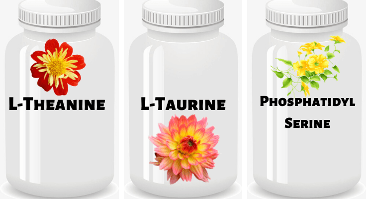 cans with l-theanine, l-taurine, and phosphatidyl serine